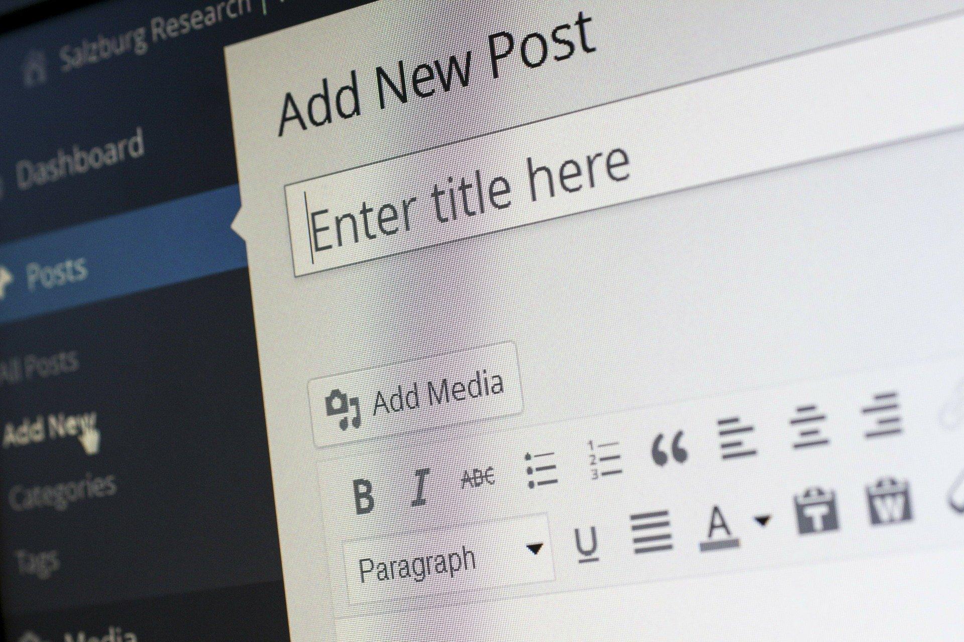 photo of a wordpress website user adding a new blog post